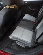 Ford Escape 1.6 EcoBoost AT 4WD (178 л.с.)